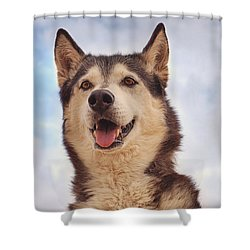 Shower Curtain featuring the photograph Muki  by Brian Cross