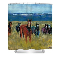 Mustangs In Southern Colorado Shower Curtain