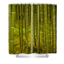Mystical Bamboo Shower Curtain