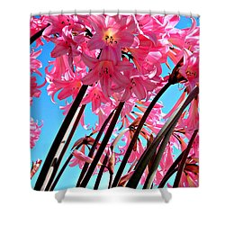 Shower Curtain featuring the photograph Naked Ladies by Vivian Krug Cotton