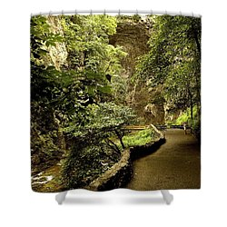 Shower Curtain featuring the photograph Natural Bridge  by Raymond Earley