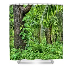 Shower Curtain featuring the photograph Nature 7 by Charuhas Images