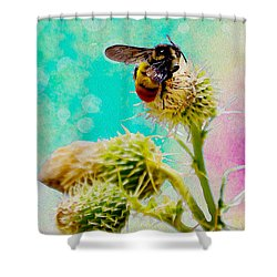 Collection Without Distructions Shower Curtain