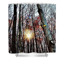 Nature Shower Curtain by MaryLee Parker
