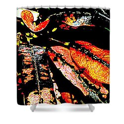 Natures Gift  Two Shower Curtain