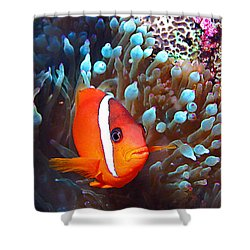 Nemo Shower Curtain