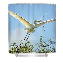 Nest Building Shower Curtain by Kenneth Albin