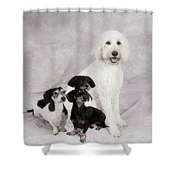Fur Friends Shower Curtain