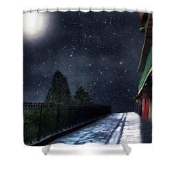Nightwalk Shower Curtain by RC deWinter