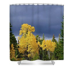 North Rim Fall  Shower Curtain
