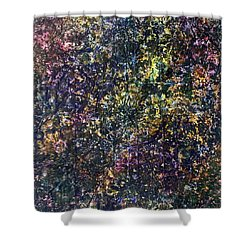 48-offspring While I Was On The Path To Perfection 48 Shower Curtain