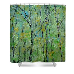 Awakening Of Spring Shower Curtain by Robin Miller-Bookhout