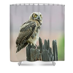 On Alert Shower Curtain