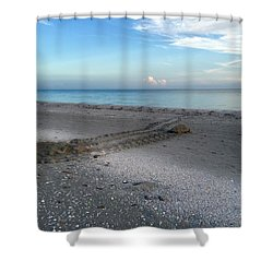 Shower Curtain featuring the photograph Once In A Lifetime by Melanie Moraga