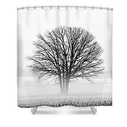 Shower Curtain featuring the photograph One... by Nina Stavlund