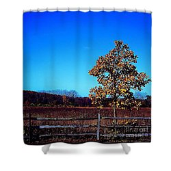 One Or Another - Square Shower Curtain