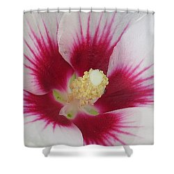 Shower Curtain featuring the photograph Open Wide by Jeanette Oberholtzer