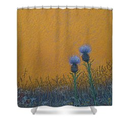 Orange Sky With Thistle Shower Curtain