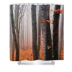 Orange Wood Shower Curtain