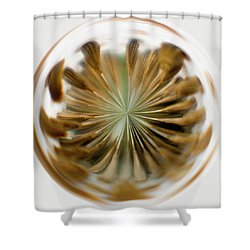 Shower Curtain featuring the photograph Orb Image Of A Dandelion by Brenda Jacobs