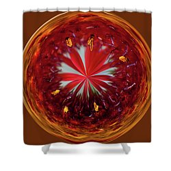 Shower Curtain featuring the photograph Orb Image Of A Gaillardia by Brenda Jacobs