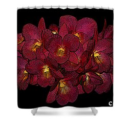Orchid Floral Arrangement Shower Curtain by Gary Crockett