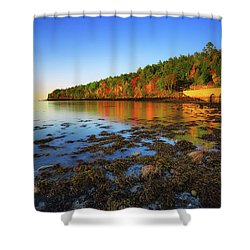 Otter Cove Shower Curtain