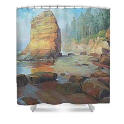 Otter Rock Beach Shower Curtain