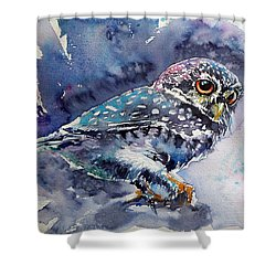 Owl At Night Shower Curtain by Kovacs Anna Brigitta