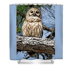 Owl In A Tree Shower Curtain