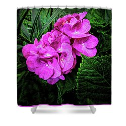 Painted Hydrangea Shower Curtain