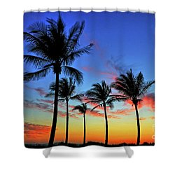 Shower Curtain featuring the photograph Palm Tree Skies by Scott Mahon