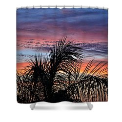 Shower Curtain featuring the photograph Palm Tree Sunrise by Nikki McInnes