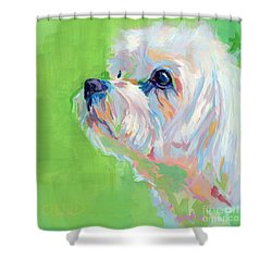 Parker Shower Curtain by Kimberly Santini