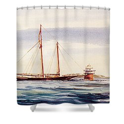 Passing Bug Light Shower Curtain
