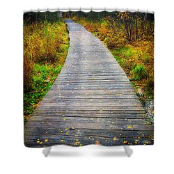 Pathway Home Shower Curtain