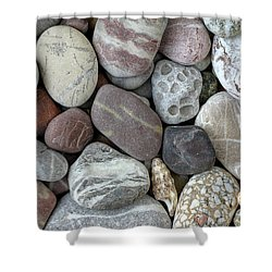 Pebbles In Earth Colors - Stone Pattern Shower Curtain by Michal Boubin