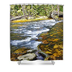 Pennsylvania Mountain Stream Shower Curtain