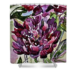 Peonies Shower Curtain by Mindy Newman