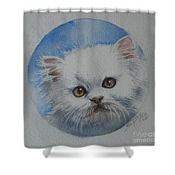 Shower Curtain featuring the painting Persian Kitten by Sandra Phryce-Jones