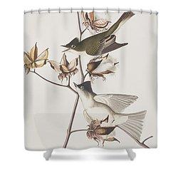 Pewit Flycatcher Shower Curtain