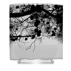 Pine Cone Branch Shower Curtain