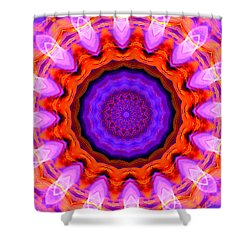 Pink 16-petals Kaleidoscope Shower Curtain