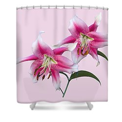 Pink And White Ot Lilies Shower Curtain by Jane McIlroy