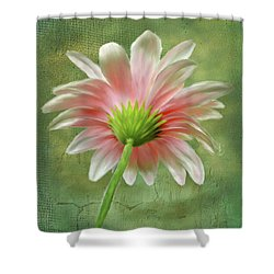 Pink Dahlia Shower Curtain by Mary Timman