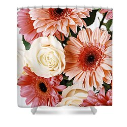 Pink Gerbera Daisy Flowers And White Roses Bouquet Shower Curtain by Radu Bercan