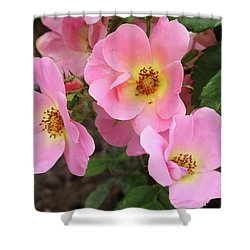 Pink Knockout Roses Shower Curtain