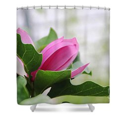 Pink Magnolia  Shower Curtain by Yumi Johnson