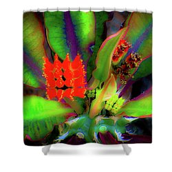 Plants And Flowers In Hawaii Shower Curtain