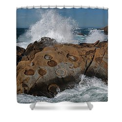 Point Lobos' Concretions Shower Curtain